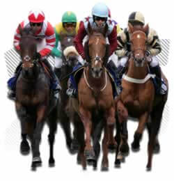 Legal Horse Betting Age